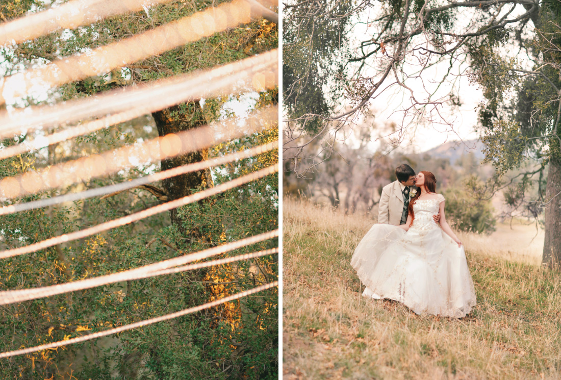 string light among trees, bride and groom kissing under mistletoe