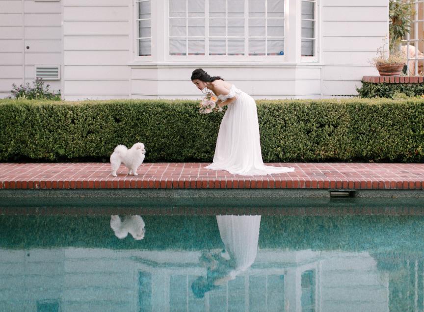 Stunning Elegant Engagement